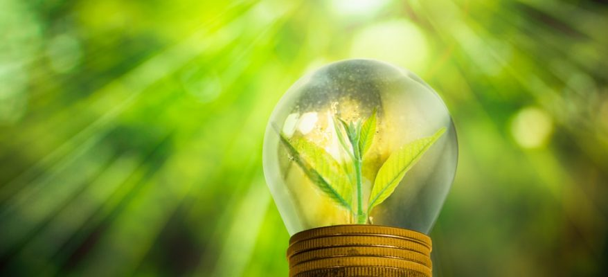 Fonti energetiche alternative